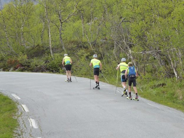 Besseggen Ridge - (nordic skiers)