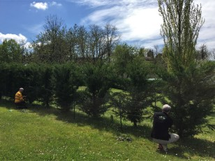 Workaway Dordogne (deer fencing)